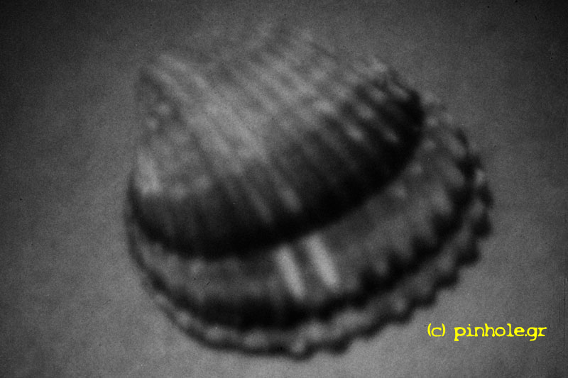 The Shell (093)