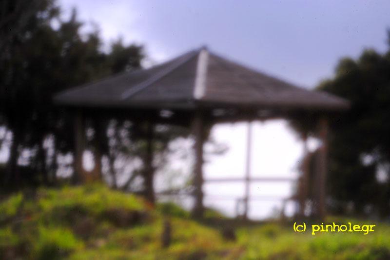 Wooden gazebo (161)