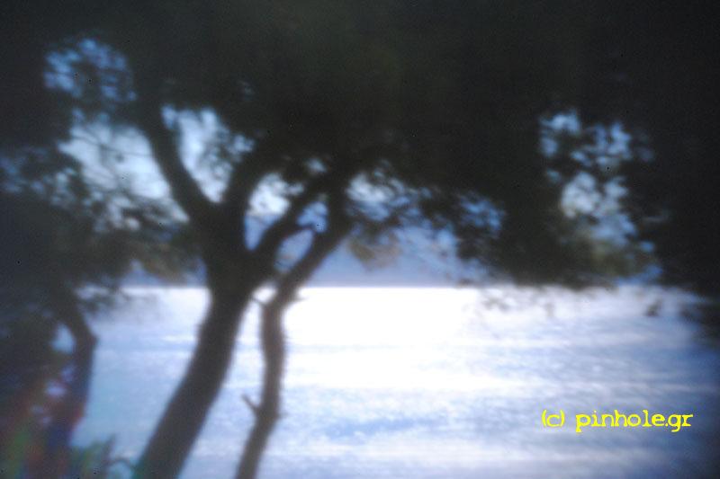 Sea View (216)