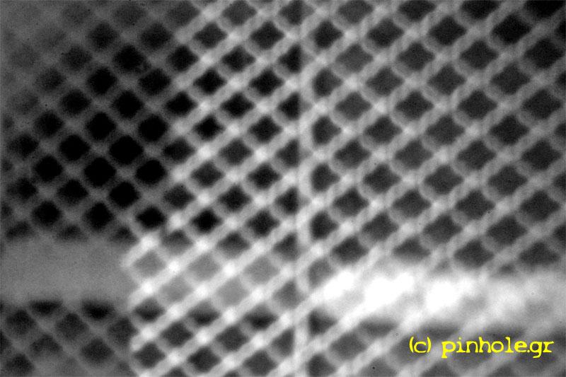 The net (293)