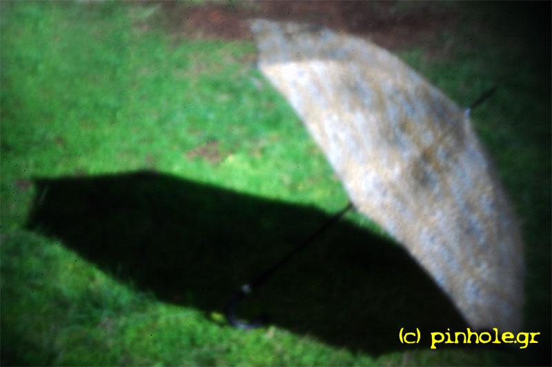 The umbrella (309)