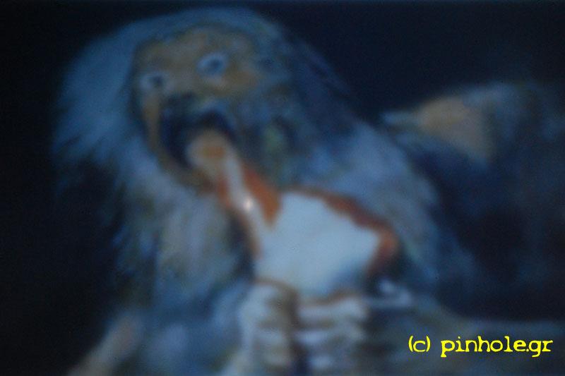 Goya (329)