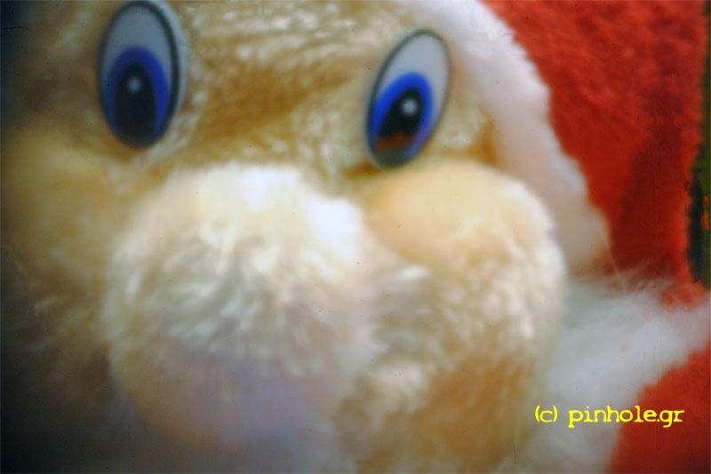 Santa (365)